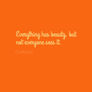 everythinghasbeauty2cbut0anoteveryoneseesit-default